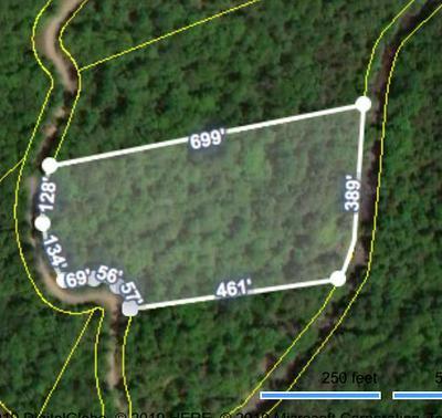 STEEL TRAM RIDGE LANE, Crawford, TN 38554 - Photo 1