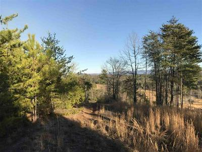 COUNTY ROAD 754, Riceville, TN 37370 - Photo 2