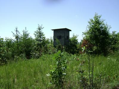 BEAR PEN RD, Whitwell, TN 37397 - Photo 2