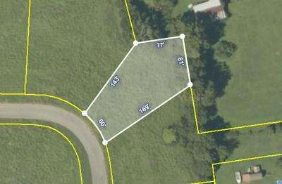 LOT 10 MEADOW LAWN DRIVE, Englewood, TN 37329 - Photo 2
