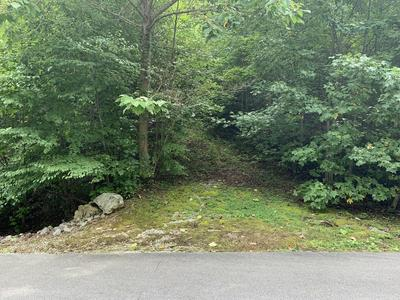 LONG RIFLE RD, Sevierville, TN 37862 - Photo 2