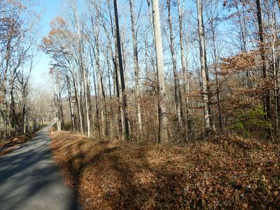 OLD JACKSBORO PIKE, Heiskell, TN 37754 - Photo 2