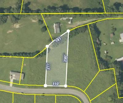 LOT 8 MEADOW LAWN DRIVE, Englewood, TN 37329 - Photo 2