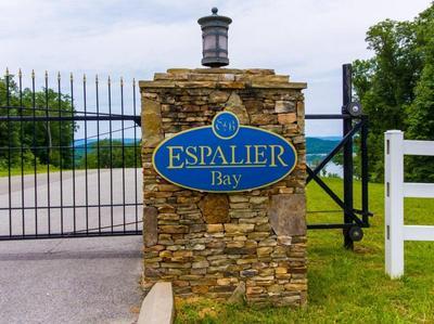 60 ESPALIER DRIVE, Decatur, TN 37322 - Photo 1