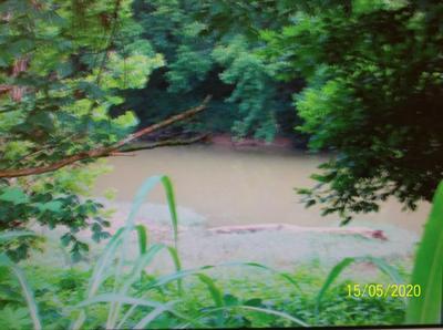 10480 CHESTNUT RIDGE RD, Eidson, TN 37731 - Photo 1
