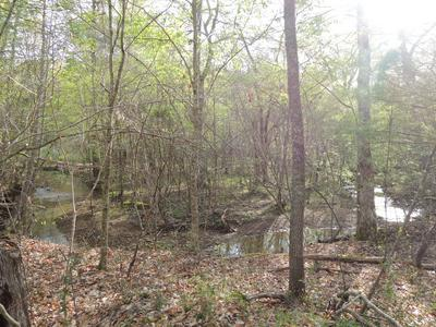 NYEDECK ROAD RD, Sunbright, TN 37872 - Photo 2