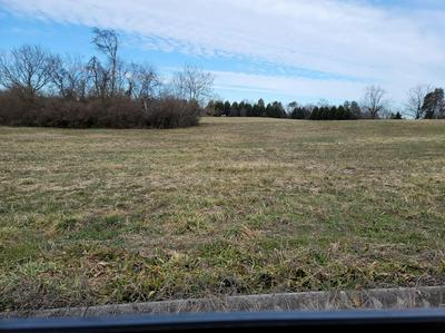 LOT 24 MEADOW LAWN DRIVE, Englewood, TN 37329 - Photo 1