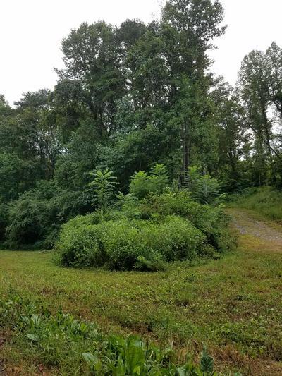 5338 WOLFENBARGER LN, Knoxville, TN 37938 - Photo 2