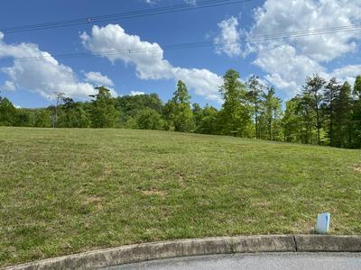 9008 THUNDER BAY WAY, Knoxville, TN 37938 - Photo 1