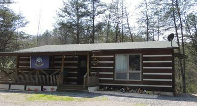 3789 HENRY TOWN RD, SEVIERVILLE, TN 37876 - Photo 1