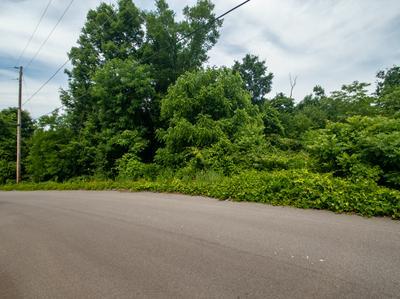 LOT 52 AUTUMN HARVEST LANE, Kodak, TN 37764 - Photo 1