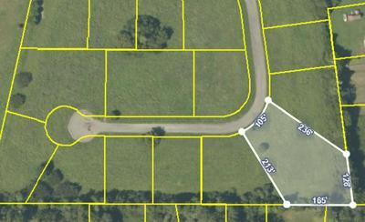 LOT 14 MEADOW LAWN DRIVE, Englewood, TN 37329 - Photo 2