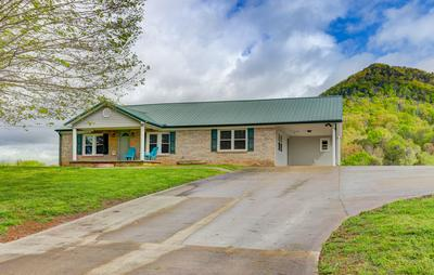 10707 MOUNTAIN RD, Luttrell, TN 37779 - Photo 2