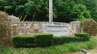 220 VINEYARD COVE DR, Loudon, TN 37774 - Photo 1