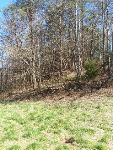 LOTS 4 & 2 MASON HOLLOW RD, Madisonville, TN 37354 - Photo 1