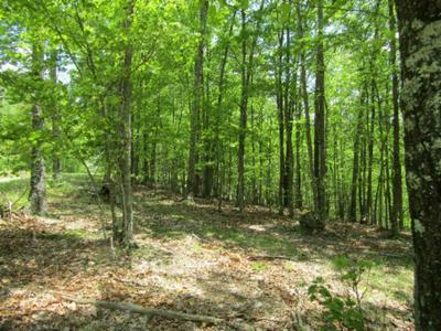LOT 9-11 WESTERN WAY, Hilham, TN 38568 - Photo 2