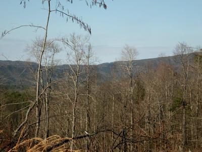 FAIRVIEW RD, Reliance, TN 37369 - Photo 1