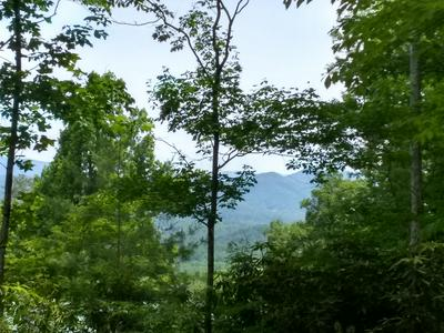 LOT 5 OLD CADES COVE ROAD, Townsend, TN 37882 - Photo 1