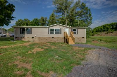 164 BLAINE DR, Blaine, TN 37709 - Photo 2