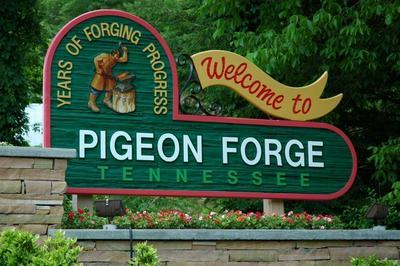 LOT 4 WALKER TR, Pigeon Forge, TN 37876 - Photo 2