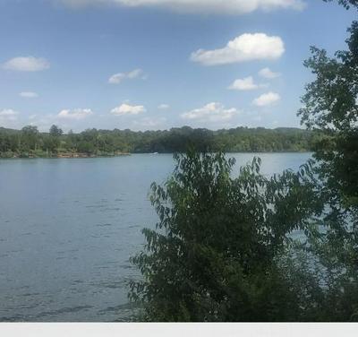 222 TUSCARORA LN, Loudon, TN 37774 - Photo 1