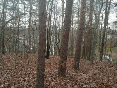 1103 WILDERNESS RD, Friendsville, TN 37737 - Photo 2
