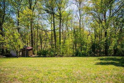BADGER DRIVE, Andersonville, TN 37705 - Photo 1