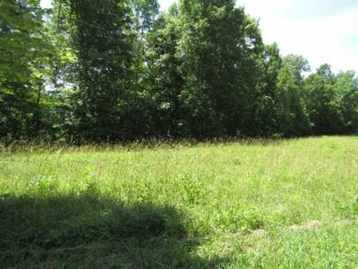 LOT 5&6 WESTERN WAY, Hilham, TN 38568 - Photo 2