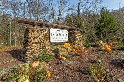 LOT #63 SMOKY RIDGE WAY, Sevierville, TN 37862 - Photo 2