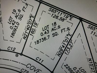 18 BLACK BEAR COVE RD, Englewood, TN 37329 - Photo 2