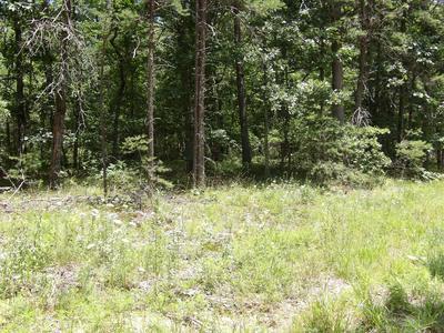 0 BROWN RD, Graysville, TN 37338 - Photo 1