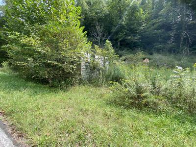 HARDY;S CREEK RD, Jonesville, VA 24263 - Photo 2