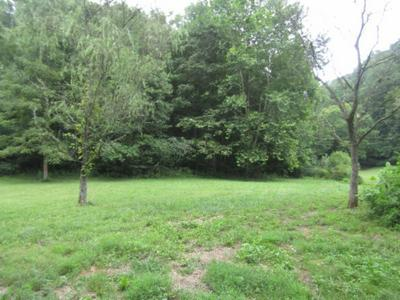 37.33AC MODOCK HOLLOW RD, CELINA, TN 38551 - Photo 1