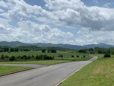 LOT 16-R SECLUDED RIVER CIRCLE, Parrottsville, TN 37843 - Photo 2