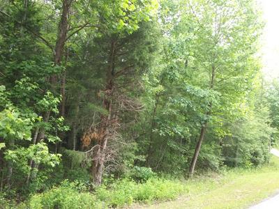 SILCOX FORD RD, Helenwood, TN 37755 - Photo 2
