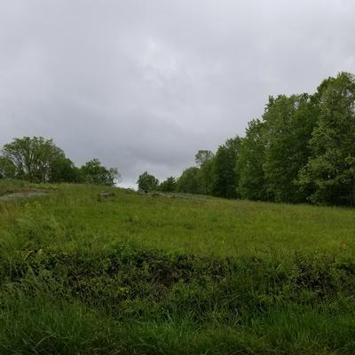 CATOOSA RD, Wartburg, TN 37887 - Photo 1