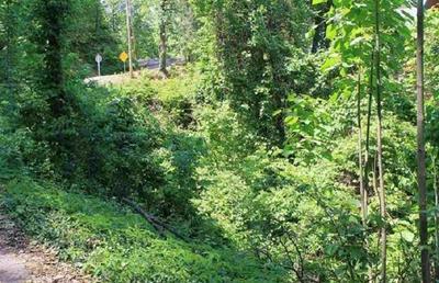STANS RD, Gatlinburg, TN 37738 - Photo 1