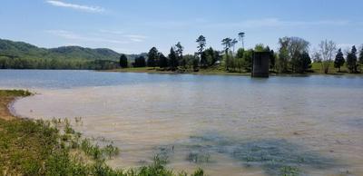 LOT 8 SHIELDS CROSSING, BEAN STATION, TN 37708 - Photo 2