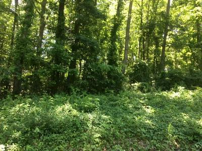 8 LAUREL PL, Norris, TN 37828 - Photo 2