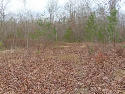 GALLAHER LANE LANE, Clarkrange, TN 38553 - Photo 2