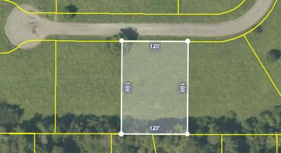 LOT 16 MEADOW LAWN DRIVE, Englewood, TN 37329 - Photo 2