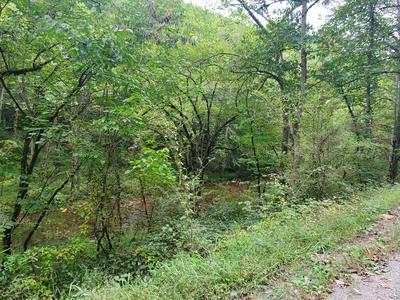HARDY'S CREEK RD, Jonesville, VA 24263 - Photo 2