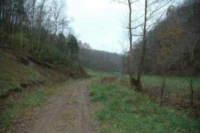 37.33AC MODOCK HOLLOW RD, CELINA, TN 38551 - Photo 2