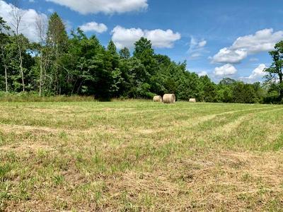 00 FOX HILL RD, Baxter, TN 38544 - Photo 1