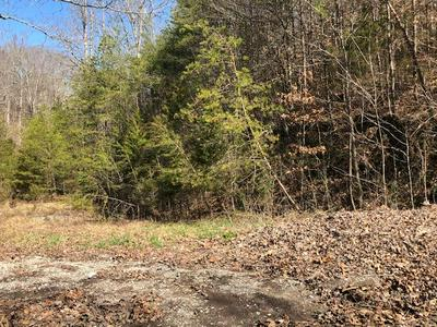 N DARK HOLLOW RD, ANDERSONVILLE, TN 37705 - Photo 1