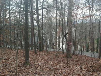 1103 WILDERNESS RD, Friendsville, TN 37737 - Photo 1