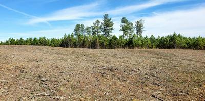 LOT 7 HUNTER'S RIDGE TR, Jamestown, TN 38556 - Photo 1