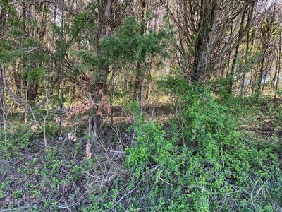 DUKE LANE, Luttrell, TN 37779 - Photo 1