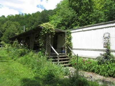 1557 ADD STAFFORD RD, CELINA, TN 38551 - Photo 2