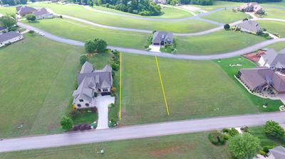 269 GRANDVILLE CT, Vonore, TN 37885 - Photo 1